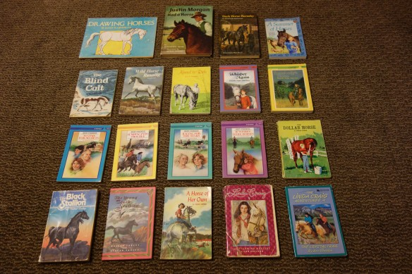 A photo of kid and young adult books about horses