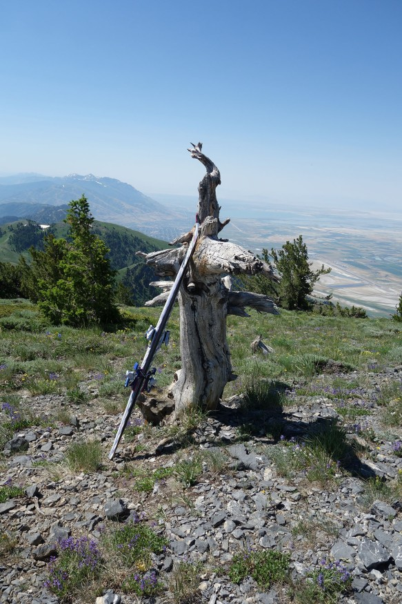 A pair of skis propped artistically against a stump on a mountain summit