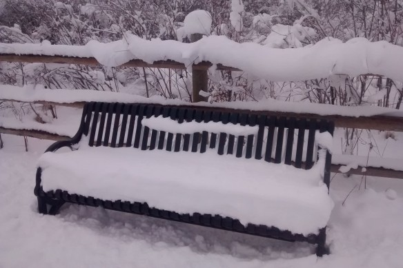 Snow piled on a park bench