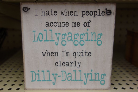 "A decorative sign that reads, ""I hate when people accuse me of lollygagging when I'm quite clearly dilly-dallying."""