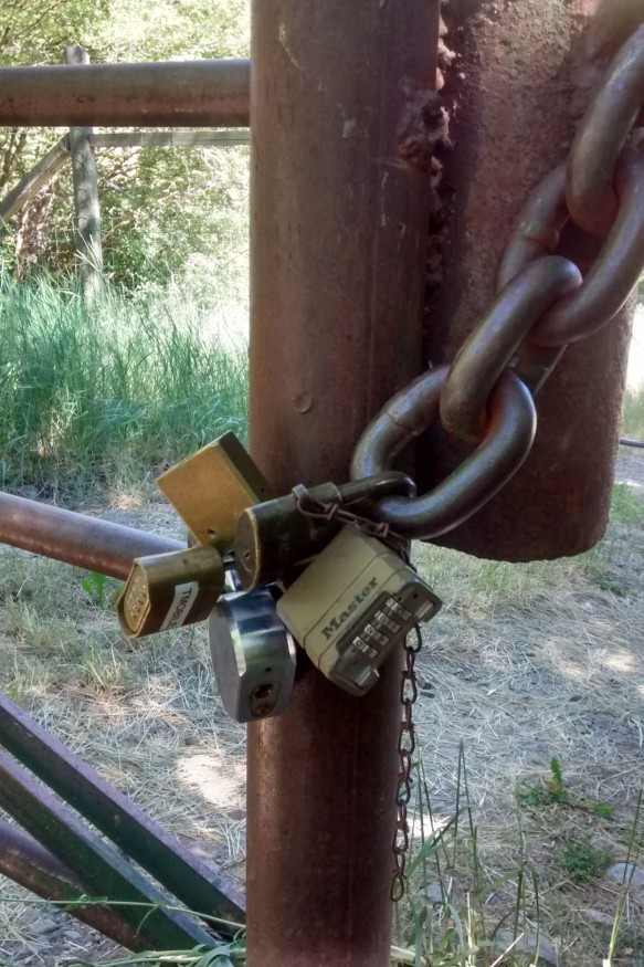 Five padlocks on a chain keeping a gate closed